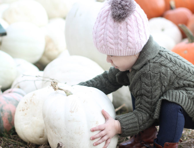 The BEST Baby Food + The Pumpkin Patch