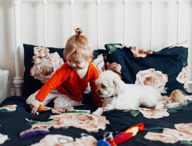 magna flex educational toy for creativity and fun positively oakes jess oakes / toddler and dog