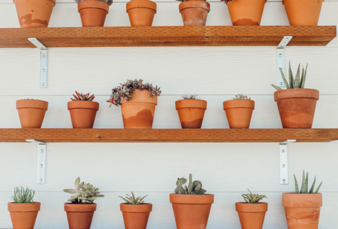 easy DIY plant shelving for a small garden or succulents with clay pots and a boho bright white feel for outdoor patio decor that's easy and affordable