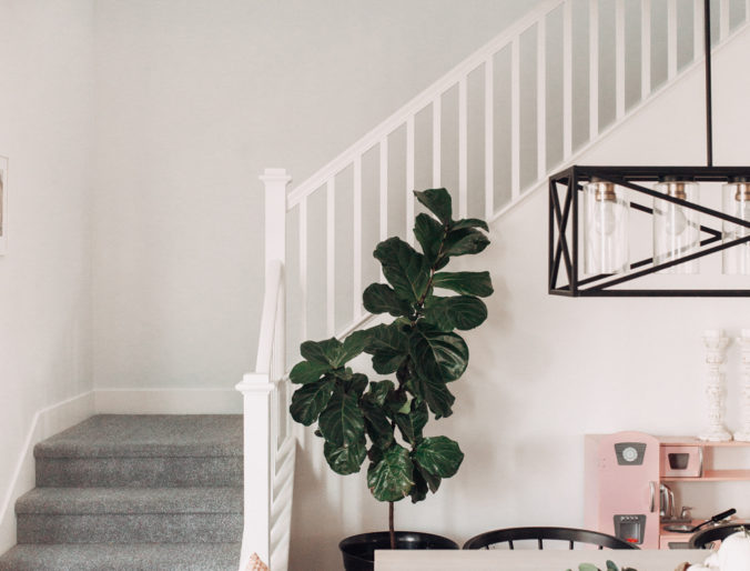 make a house feel like home / 5 things you need to know when buying a house, first time home buyer important facts to purchasing homes.com